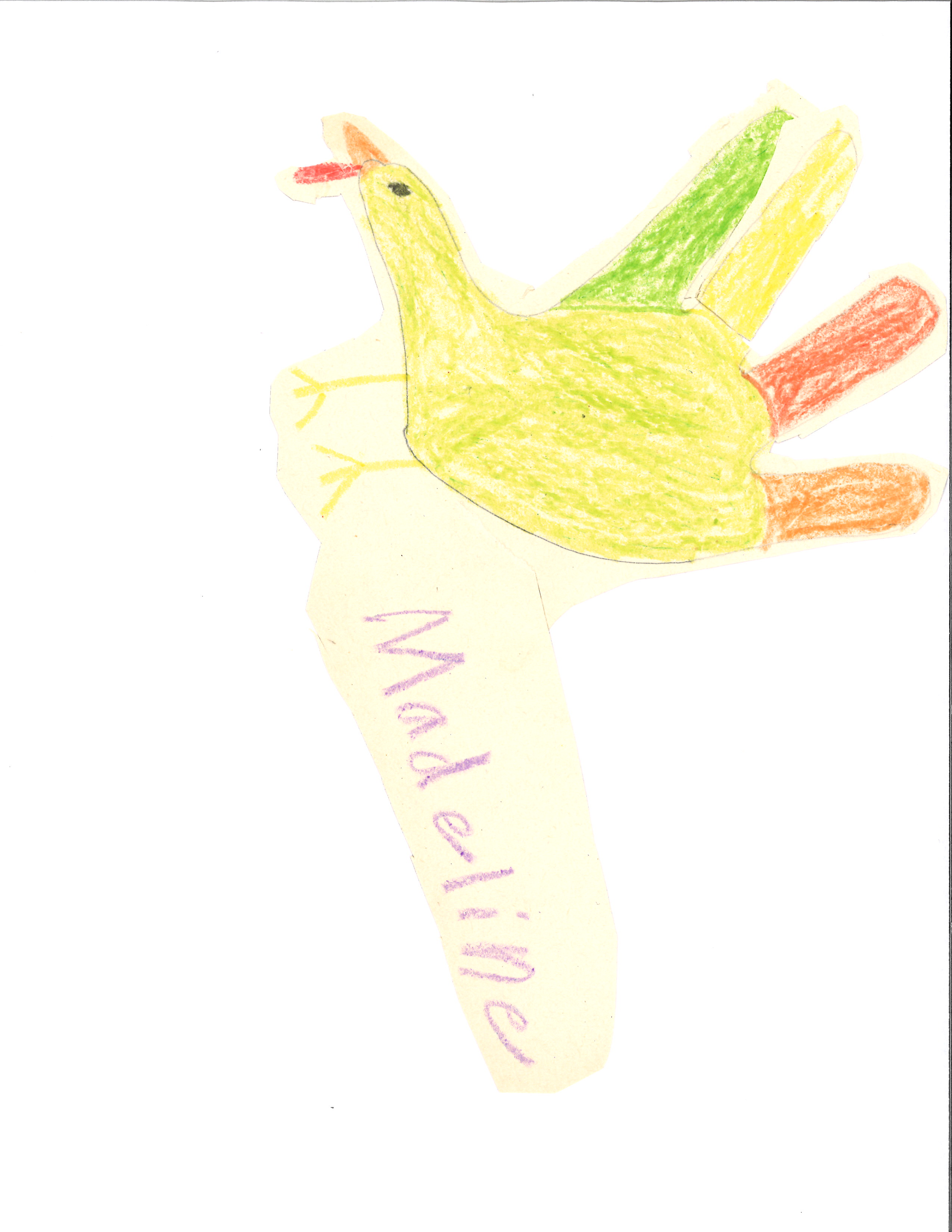thanksgiving how to cook a turkey u2014 by 3rd graders at kilmichael